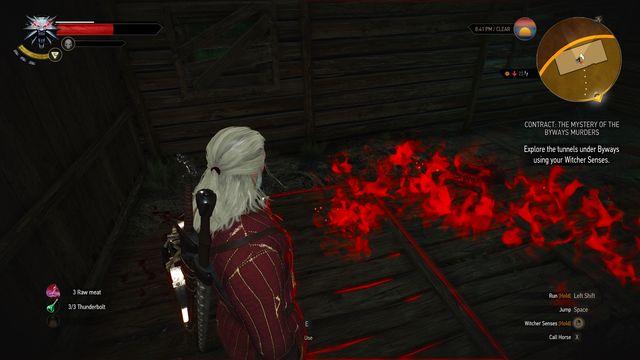 la visualisation des odeurs dans The Witcher 3